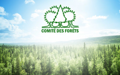 Lancement du nouveau site Web du Comité des Forêts
