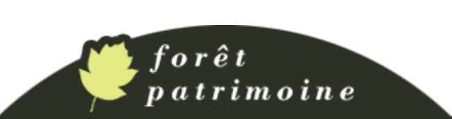 Forêt Patrimoine - Vente et achat de forêts